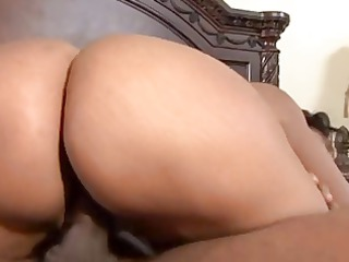 choclate milf 2 - lacey duvalle
